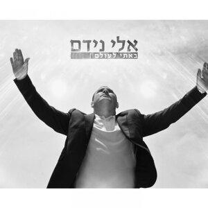 Eli Nidam 歌手頭像