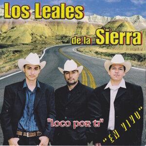 Los Leales de La Sierra 歌手頭像