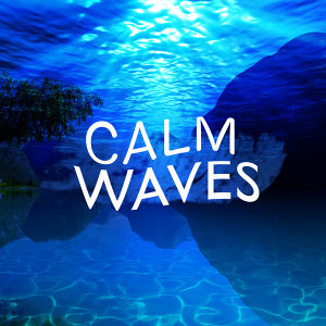 Calming Waves 歌手頭像
