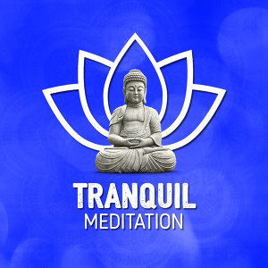 Tranquil Meditation 歌手頭像
