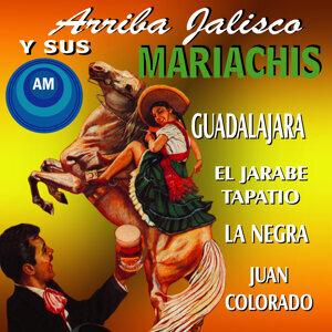 Mariachi Chapala De Armando López 歌手頭像