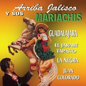 Mariachi Chapala 歌手頭像