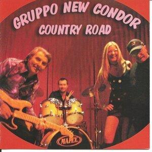 Cicci Guitar Condor, Gruppo New Condor 歌手頭像