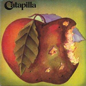 Catapilla 歌手頭像