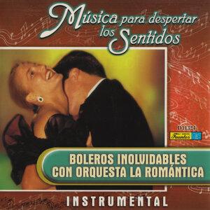 Orquesta La Romántica 歌手頭像