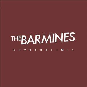The Barmines 歌手頭像