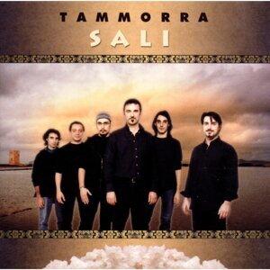 Tammorra 歌手頭像