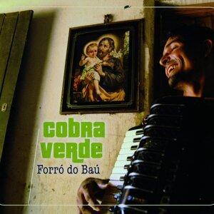 Cobra Verde 歌手頭像