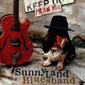 Sunnyland Bluesband 歌手頭像