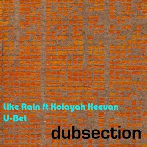 Dubsection 歌手頭像