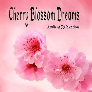 Cherry Blossom Dreams 歌手頭像
