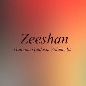 Zeeshan 歌手頭像