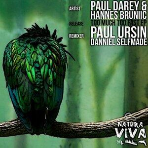 Paul Darey & Hannes Bruniic 歌手頭像
