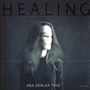 Aga Derlak Trio 歌手頭像