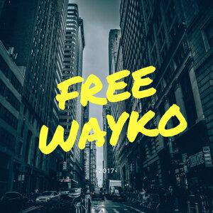 Wayko 歌手頭像