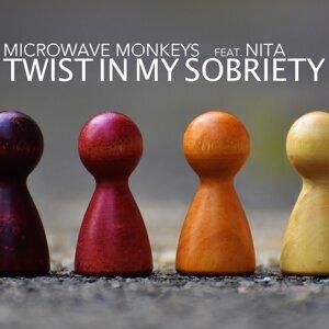 Microwave Monkeys feat. Nita 歌手頭像