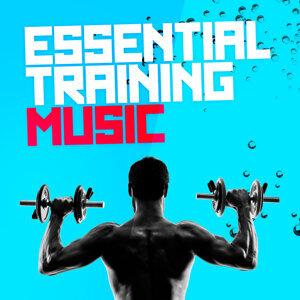 Training Music 歌手頭像