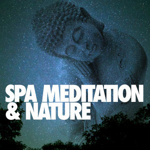 Nature Spa Meditation Music 歌手頭像