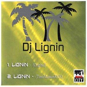 Lignin 歌手頭像