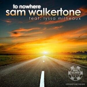 Sam Walkertone feat. Lyssa Milneaux 歌手頭像