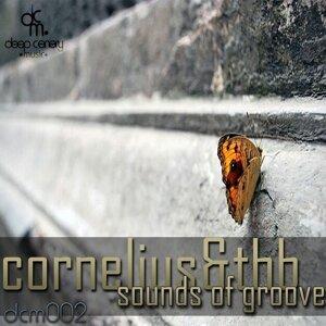 Cornelius, Thb 歌手頭像