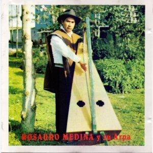Rosauro Medina y Su Arpa 歌手頭像