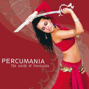 Percumania 歌手頭像