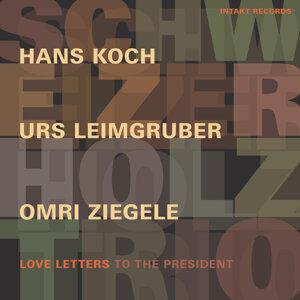 Schweizer Holz Trio 歌手頭像