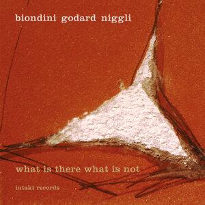 Biondini - Godard - Niggli 歌手頭像