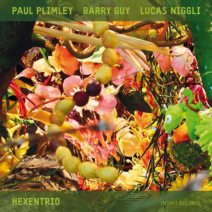 Paul Plimley, Barry Guy & Lucas Niggli 歌手頭像