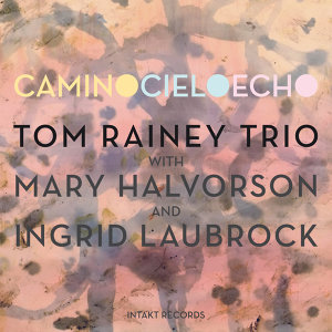 Tom Rainey Trio with Mary Halvorson & Ingrid Laubrock 歌手頭像