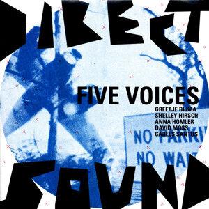 Direct Sound with Greetje Bijma, Shelley Hirsch, Anna Homler, David Moss & Carles Santos 歌手頭像
