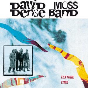 David Moss Dense Band 歌手頭像