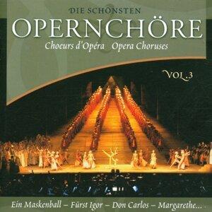 Chor der Staatsoper Wien, Orchester der Volksoper Wien, Franz Bauer-Theussl 歌手頭像
