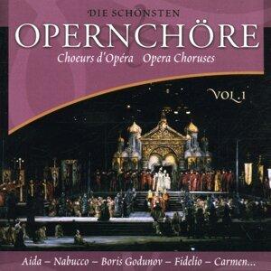 Die Schönsten Opernchöre Vol. 1 歌手頭像