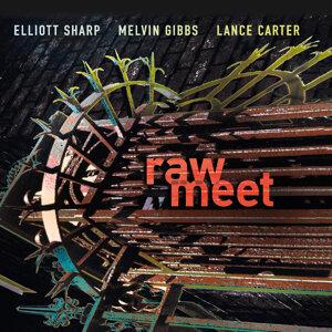 Elliott Sharp, Melvin Gibbs & Lance Carter 歌手頭像
