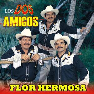 Los Dos Amigos 歌手頭像