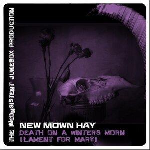 New Mown Hay 歌手頭像