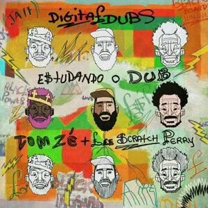 Digitaldubs