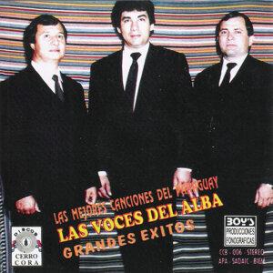 Las Voces Del Alba 歌手頭像