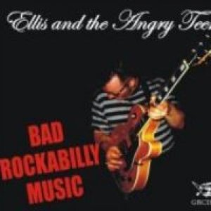 Ellis And The Angry Teens 歌手頭像