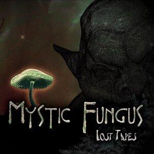 Mystic Fungus 歌手頭像