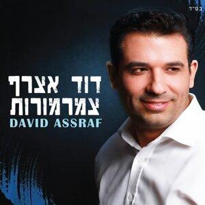 David Assraf 歌手頭像