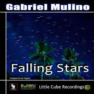 Gabriel Mulino 歌手頭像