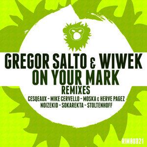 Gregor Salto, Wiwek
