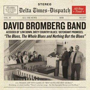David Bromberg Band 歌手頭像