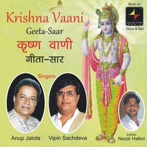 Anup Jlota, Vipin Sachdeva 歌手頭像