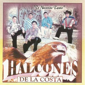 Halcones De La Costa 歌手頭像