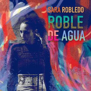 Sara Robledo 歌手頭像