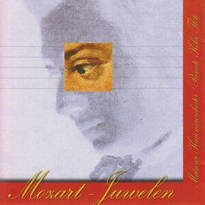 William Jones, Mladen Basic, Mainzer Kammerorchester 歌手頭像